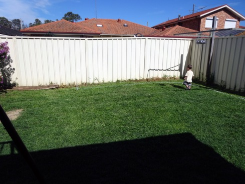 The back yard now.  The garden is not even remotely finished, but we've finally started it.