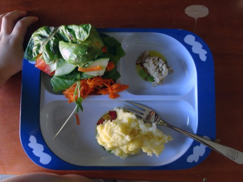 """Hannah helped me make the salad, and added more to her plate than I had on there for her because """"she really likes it"""" now.  It has: lettuce (home grown), tomatoes, cucumber, avocado, pea sprouts, grated carrot, and olive oil.  On the right is a piece of home made chicken meat loaf, and the thing she can eat if she wants that she already likes is mashed potato."""