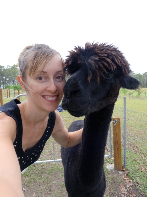 Selfie with an alpaca.  She was very cooperative :)