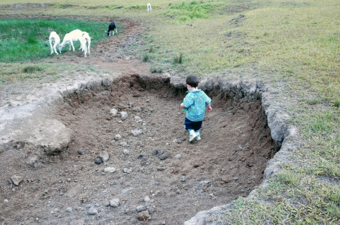 Daniel playing in a big hole in one of the paddocks.